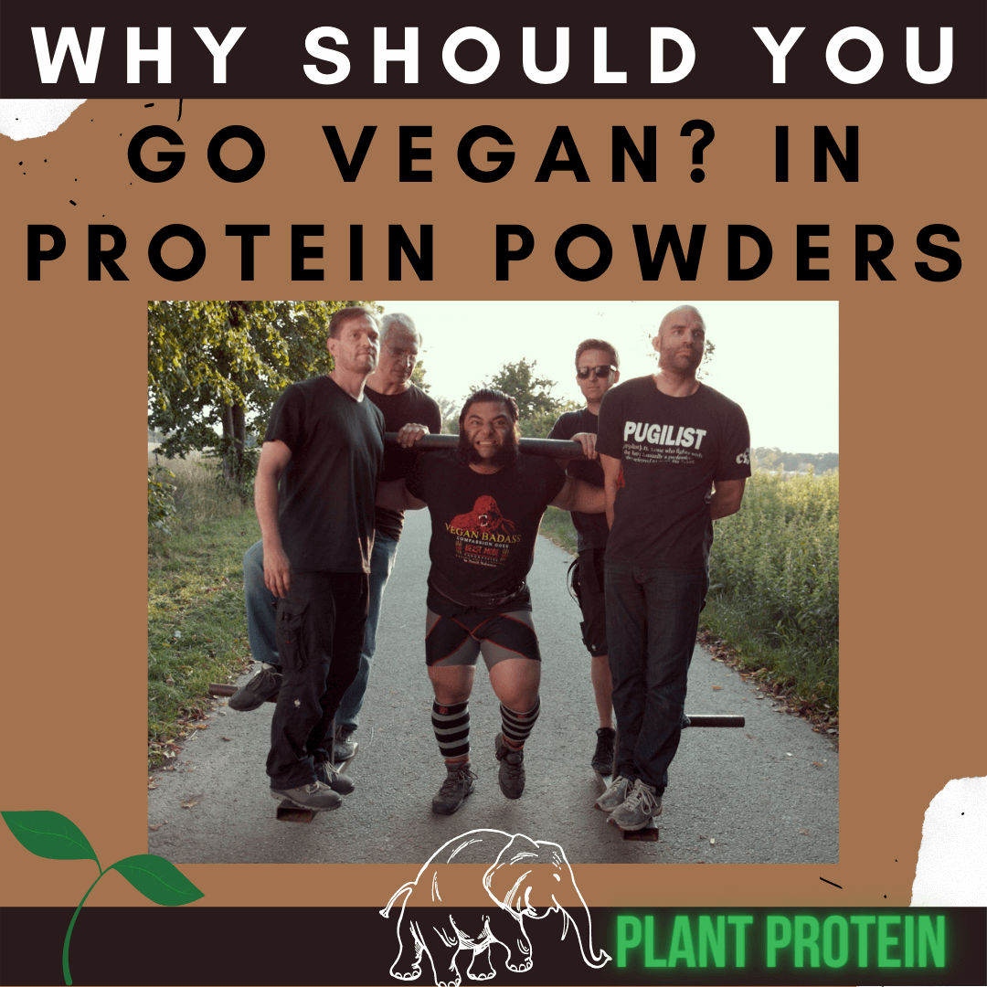 Why Should You Go Vegan? In Protein Powders